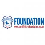 Cardiff City Stadium Tours